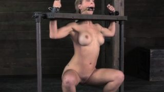 Restrained milf mouthgaped and pussytoyed